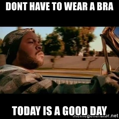Ice Cube- Today was a Good day - Dont have to wear a bra today is a good day