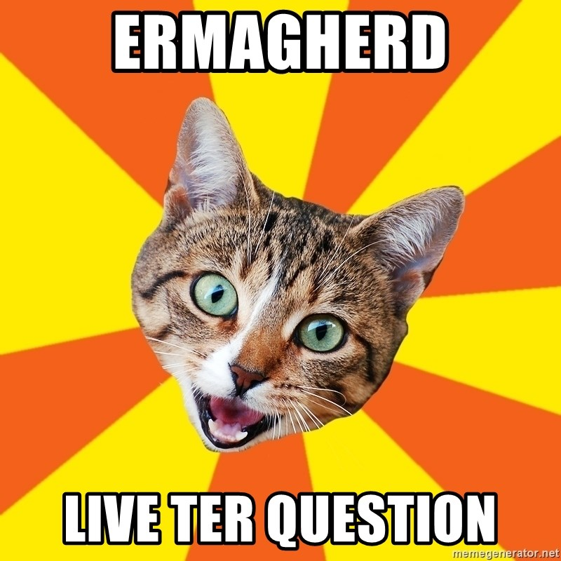 Bad Advice Cat - ermagherd live ter question