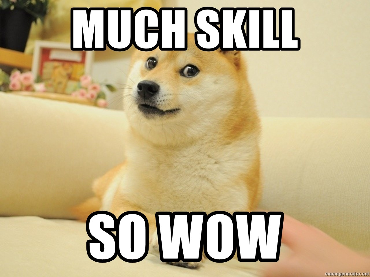 so doge - much skill so wow