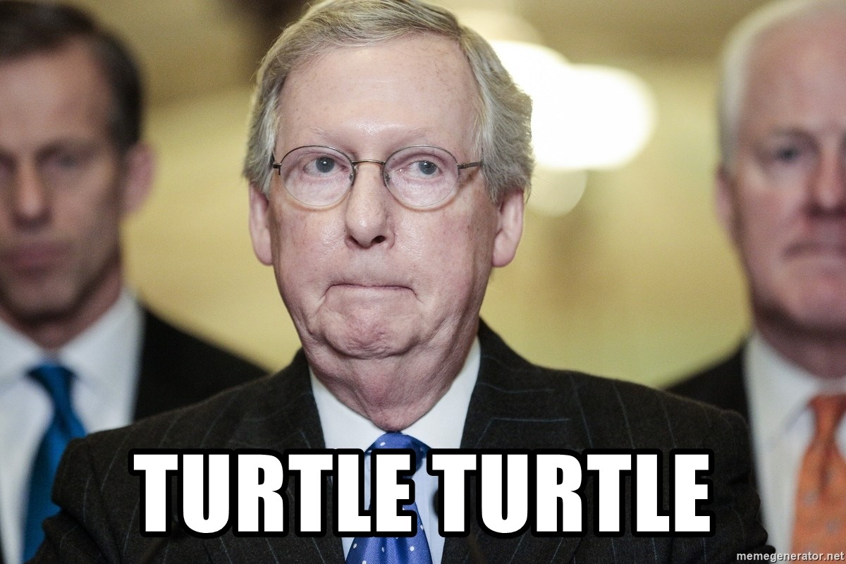 Mitch McConnell - TURTLE TURTLE