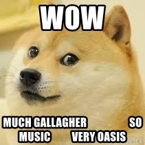 dogeee - wow much gallagher                    so music          very oasis