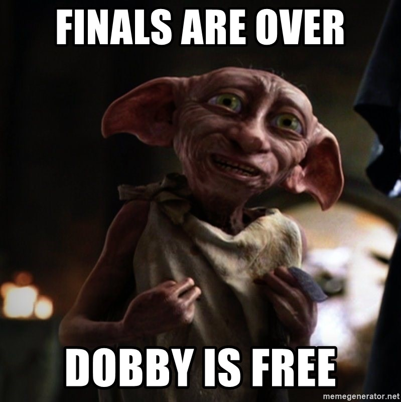 Dobby is Free Socks. These Dobby the Free Elf socks are perhaps the perfect gift for any season. How many of you cried when Dobby got a sock and was free and wished you could have a sock like that?! T hese plush and soft socks are perfect for Harry Potter fans.