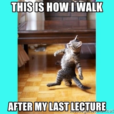 This is how i walk after my last lecture cat walk meme generator thecheapjerseys Gallery