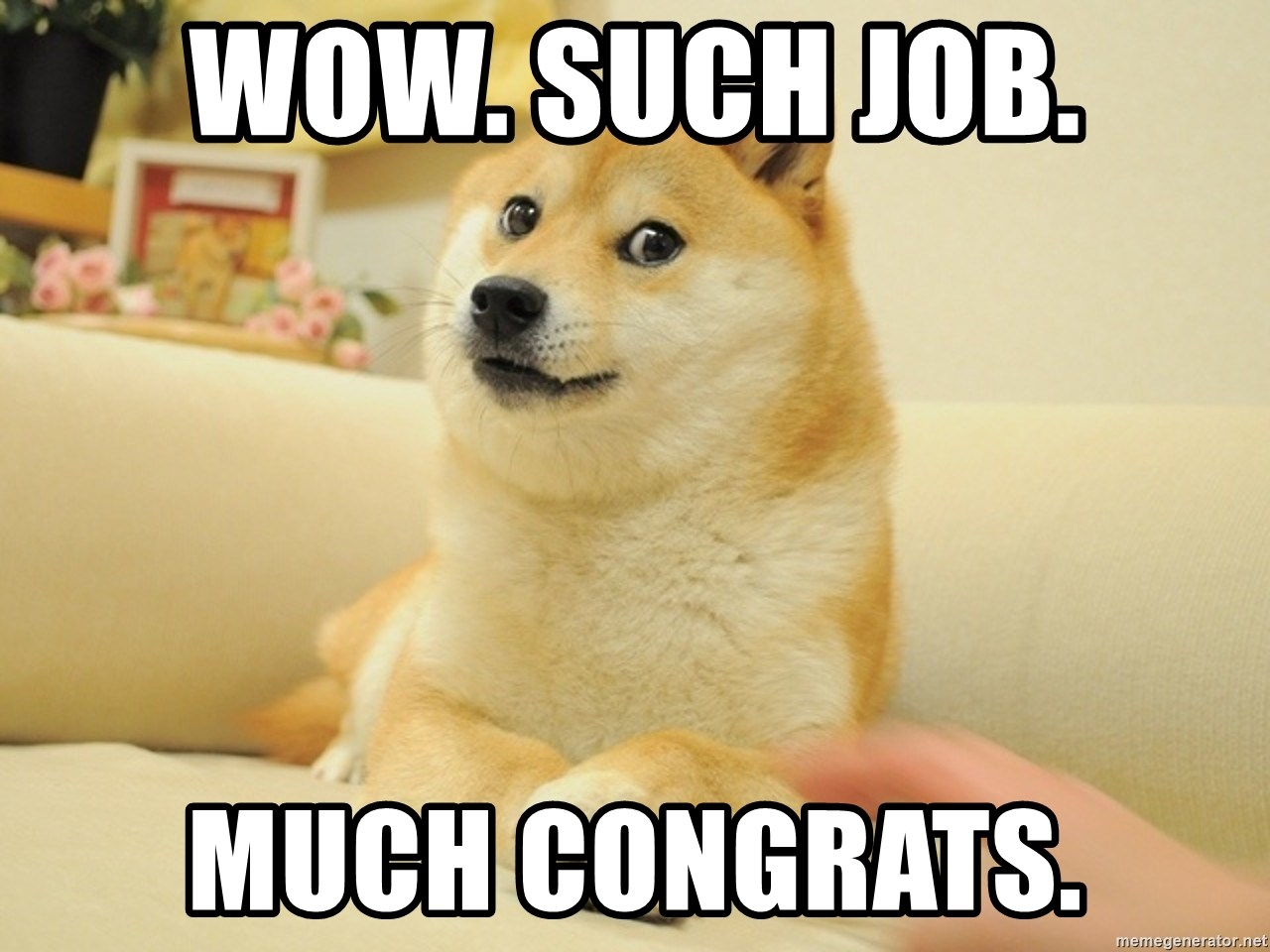 so doge - wow. Such Job. Much Congrats.