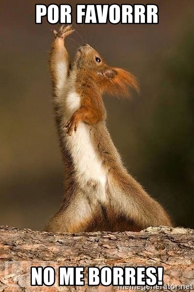 dramatic squirrel - por favorrr no me borres!