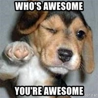 who's awesome dog - Who's awesome you're awesome
