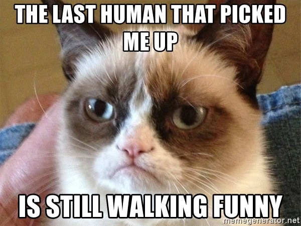 Angry Cat Meme - the last human that picked me up is STILL walking funny