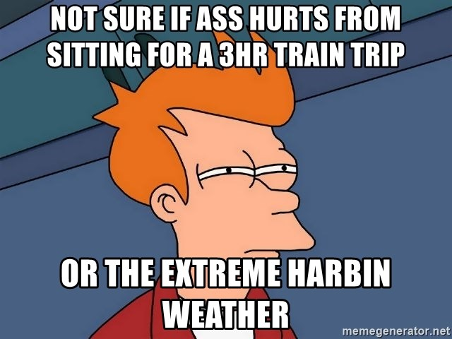 Futurama Fry - not sure if ass hurts from sitting for a 3hr train trip or the extreme Harbin weather