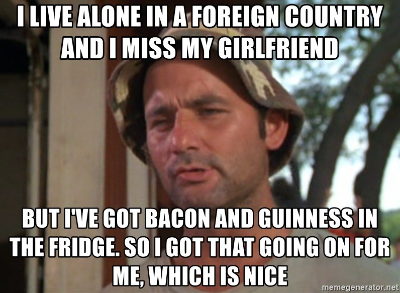 So I got that going on for me, which is nice - I live alone in a foreign country and I miss my girlfriend but i've got bacon and guinness in the fridge. So I got that going on for me, which is nice