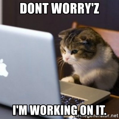 Dont Worry Z I M Working On It Cat Computer Meme
