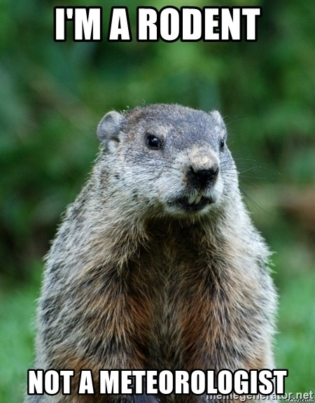grumpy groundhog - I'm a rodent not a meteorologist