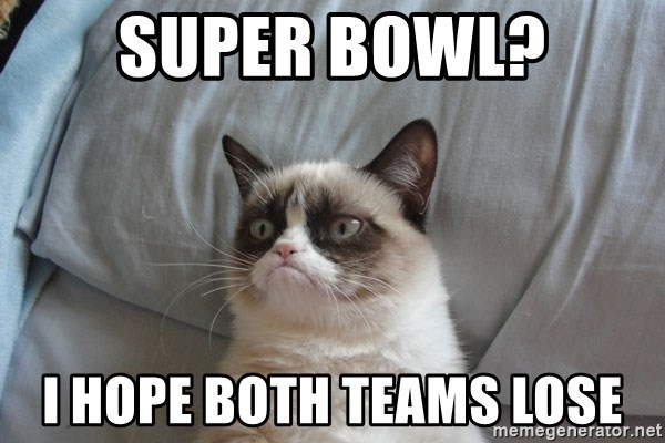 Grumpy Cat  - Super Bowl? I hope both teams lose