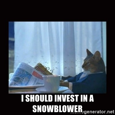 i should buy a boat cat -  I should invest in a snowblower
