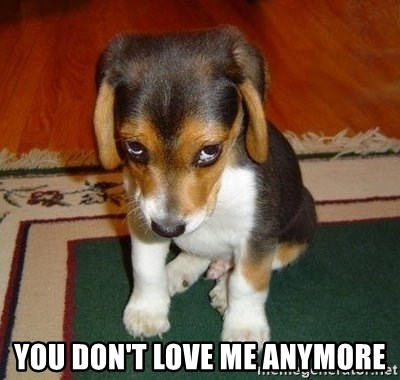 45617446 you don't love me anymore sad puppy meme generator