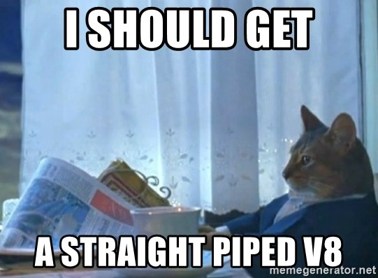 newspaper cat realization - I should get a straight piped v8