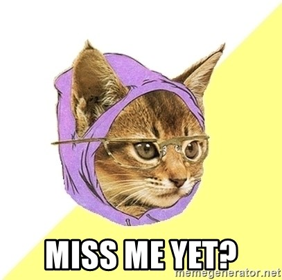 Hipster Kitty -  Miss me yet?