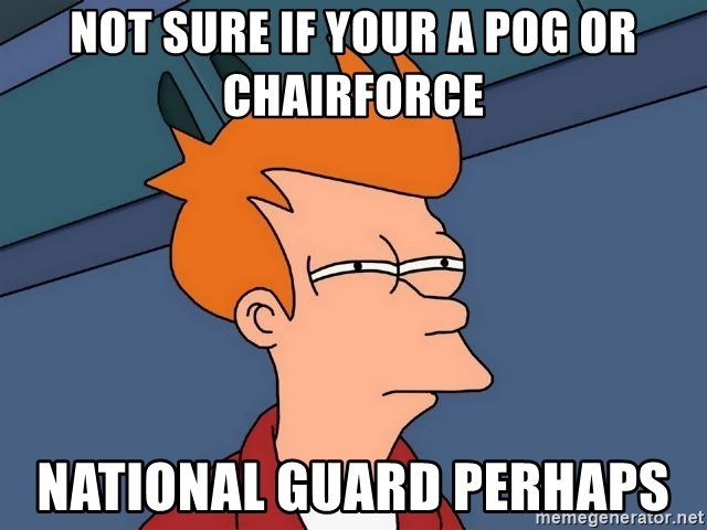 Futurama Fry - not sure if your a pog or chairforce  national guard perhaps