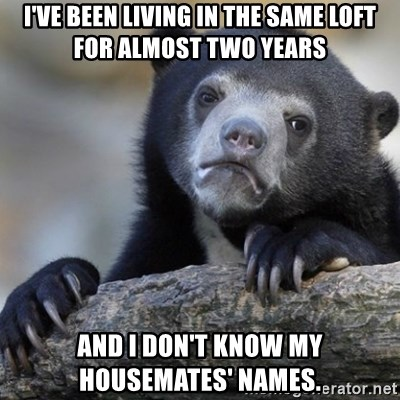 Confession Bear - I've been living in the same loft for almost two years and i don't know my housemates' names.