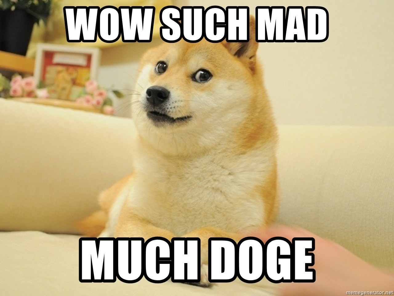 so doge - Wow Such mad Much Doge