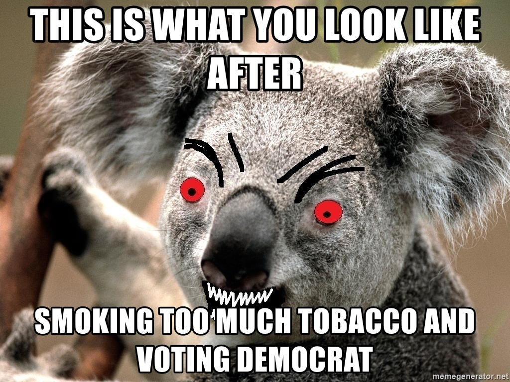 Abortion Koala - this is what you look like after smoking too much tobacco and voting democrat