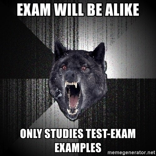 Insanity Wolf - exam will be alike Only studies test-exam examples