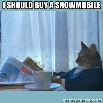 rich cat  - I SHOULD BUY A SNOWMOBILE