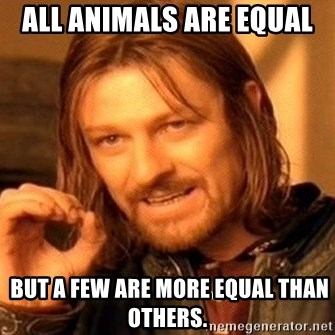 One Does Not Simply - ALL ANIMALS ARE EQUAL  but a few are more equal than others.