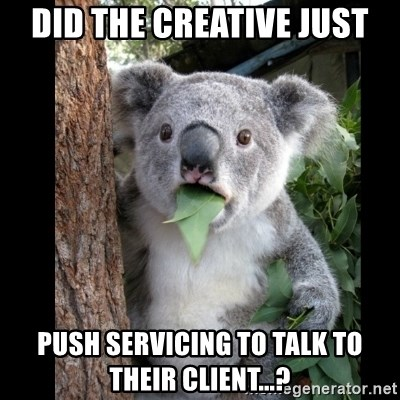 Koala can't believe it - Did the Creative Just Push Servicing to Talk to their client...?