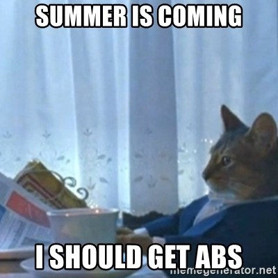 Sophisticated Cat Meme - Summer is coming I should get abs