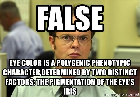 False guy - FALSE Eye color is a polygenic phenotypic character determined by two distinct factors: the pigmentation of the eye's iris
