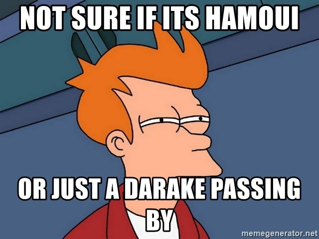 Futurama Fry - NOT SURE IF ITS HAMOUI or just a darake passing by