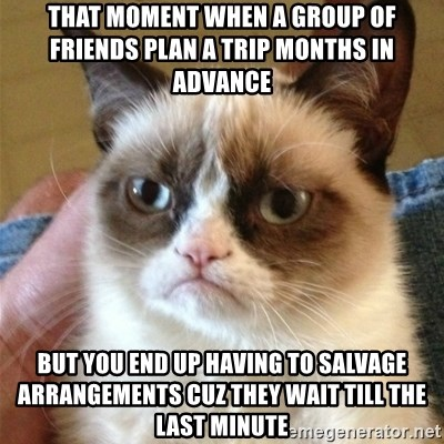 Grumpy Cat  - That moment when a group of friends plan a trip months in advance But you end up having to salvage arrangements cuz they wait till the last minute