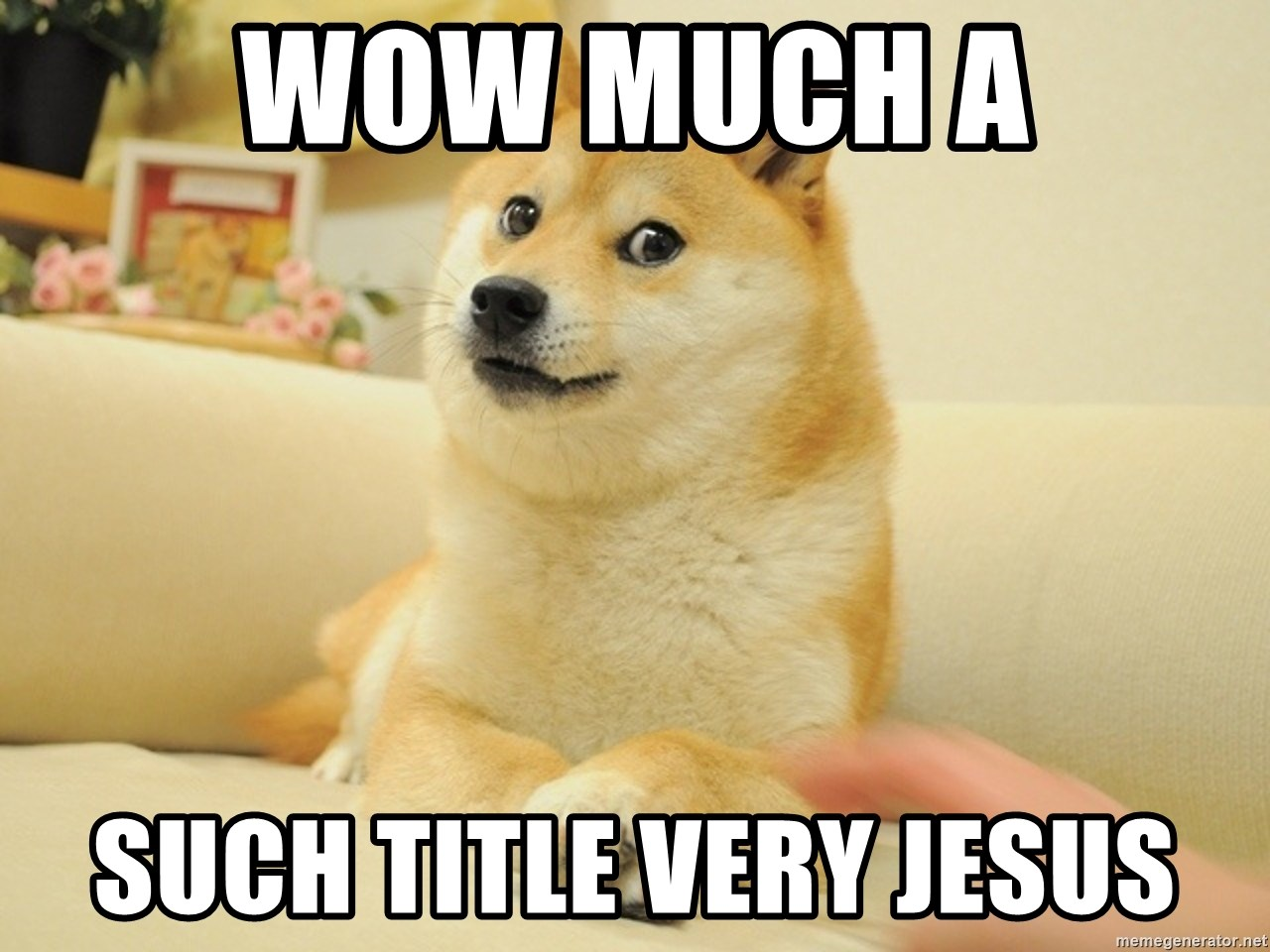 so doge - wow much a such title very jesus