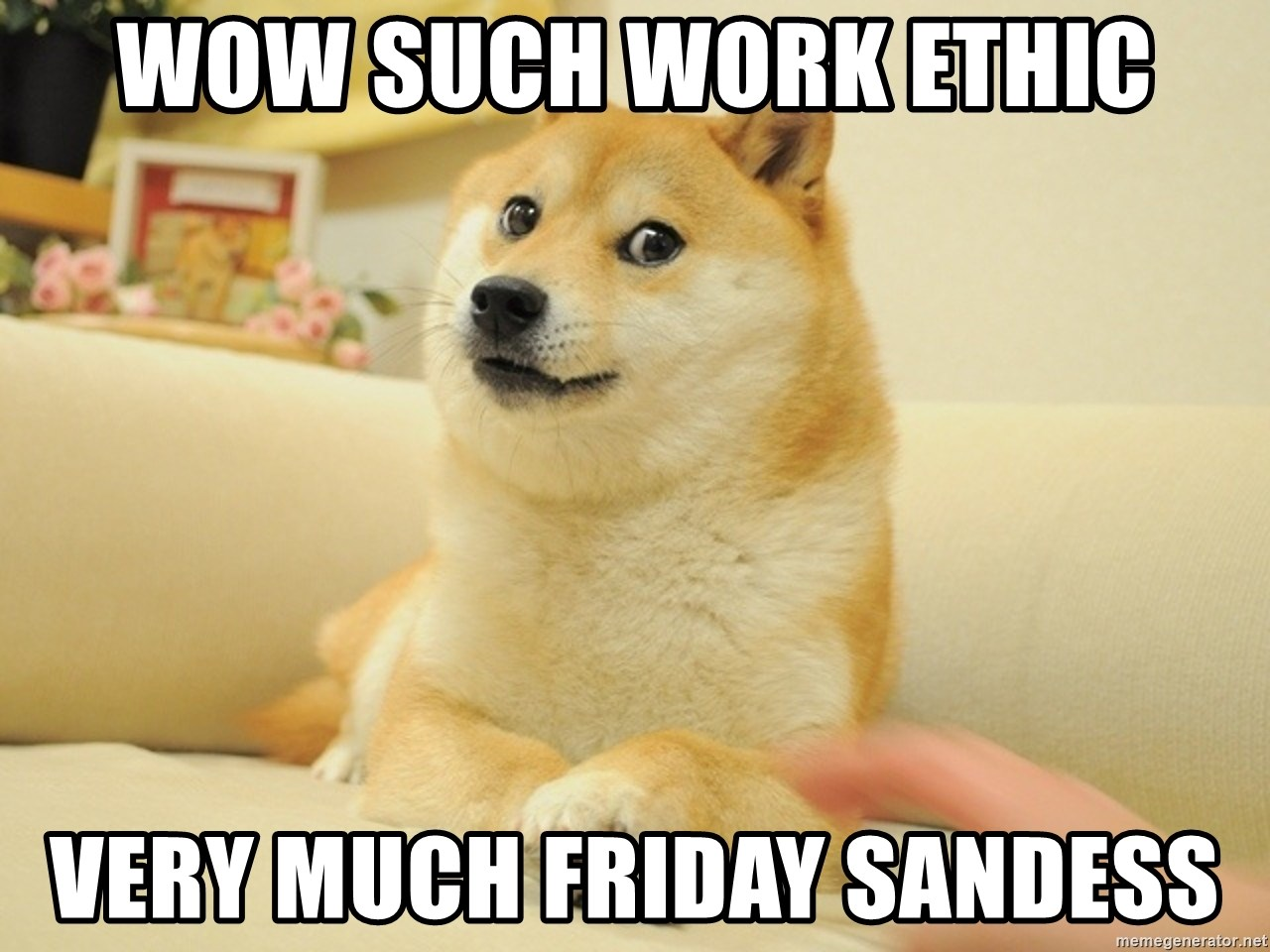 so doge - wow such work ethic very much friday sandess