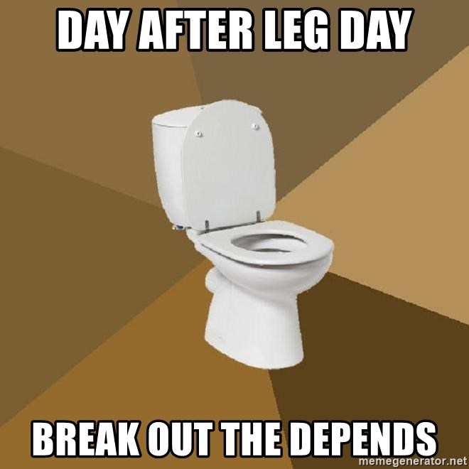 talking toilet - Day after leg day Break out the depends