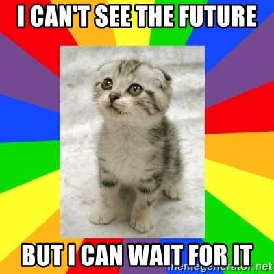Cute Kitten - i can't see the future but i can wait for it