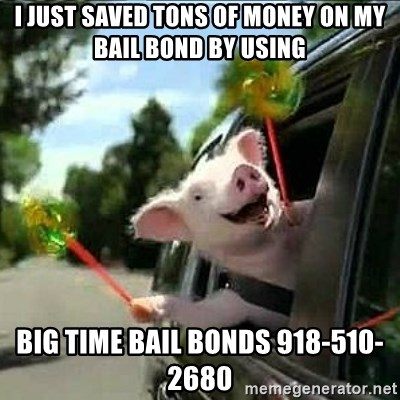 geico pig - I just saved tons of money on my bail bond by using Big Time Bail Bonds 918-510-2680