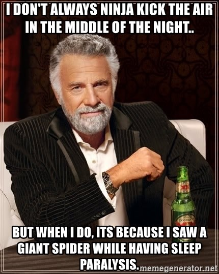 The Most Interesting Man In The World - I don't always ninja kick the air in the middle of the night.. but when I do, its because I saw a giant spider while having sleep paralysis.