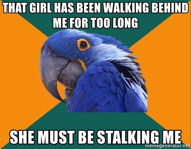 Paranoid Parrot - That girl has been walking behind me for too long She must be stalking me