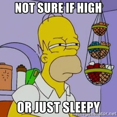 Simpsons' Homer - Not sure if high or just sleepy