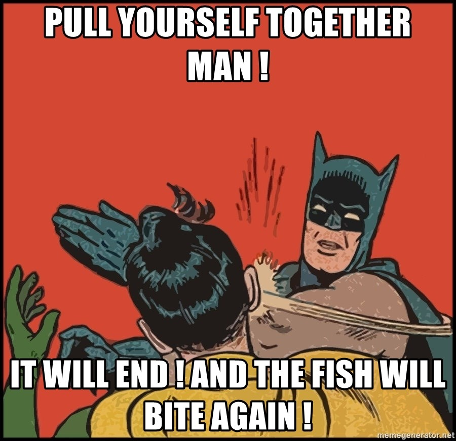Batman slaps robin 2 - Pull yourSelf together man ! It will end ! And the fish will Bite again !