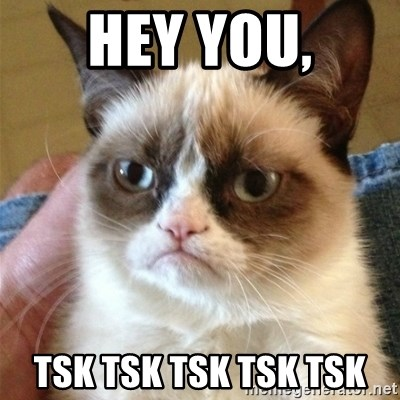 HEY YOU, TSK TSK TSK TSK TSK - Grumpy Cat | Meme Generator