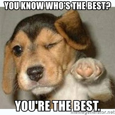 fist bump puppy - you know who's the best? you're the best.