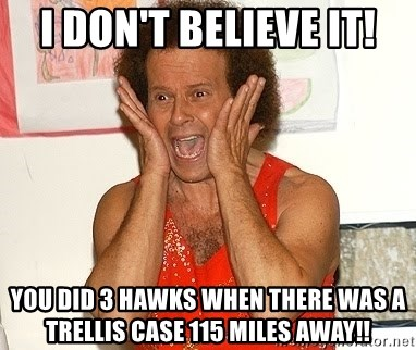 Richard Simmons Screaming - I don't believe it! You did 3 hawks when there was a trellis case 115 miles away!!