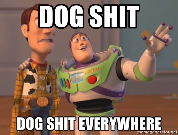 Dog Shit Dog Shit Everywhere Toy Story 1 Meme Generator