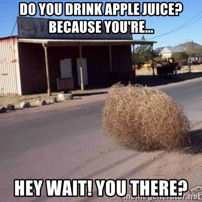 Tumbleweed - Do you drink apple juice? Because you're... hey wait! You there?