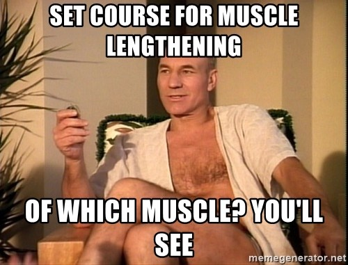 Sexual Picard - Set course for muscle lengthening Of which muscle? You'll see
