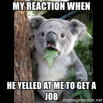 Koala can't believe it - my reaction when he yelled at me to get a job