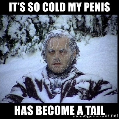 46727219 it's so cold my penis has become a tail frozen man meme generator,So Cold Meme