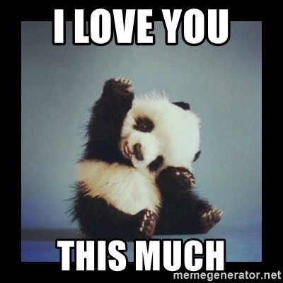 Cute Baby Panda - I love you  This much